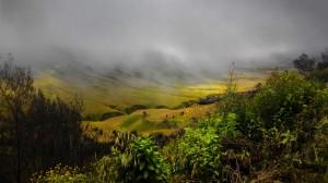 View Savana dari Jemplang
